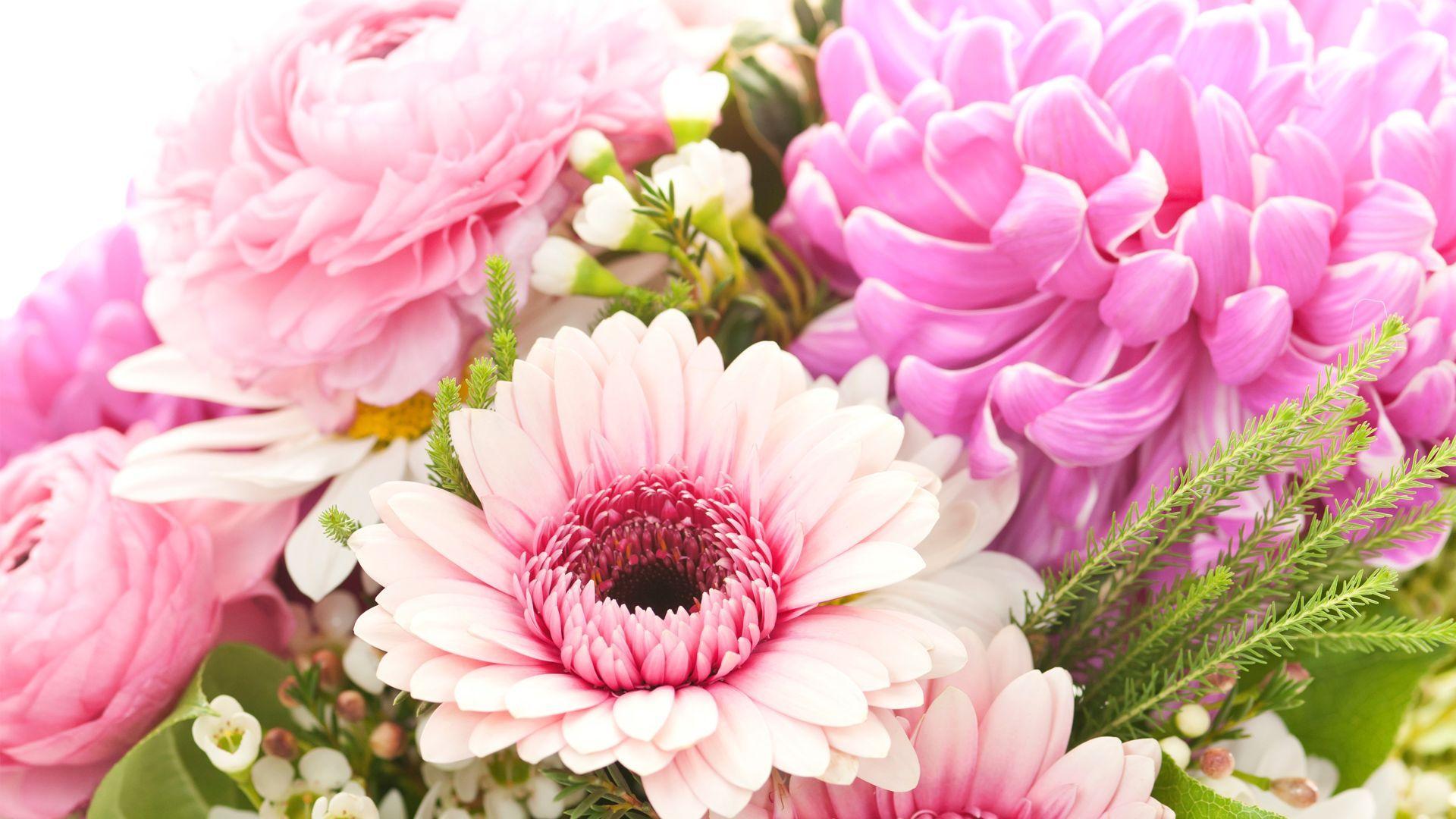 Las mejores flores  para el verano - Amborella, floristería online en Madrid