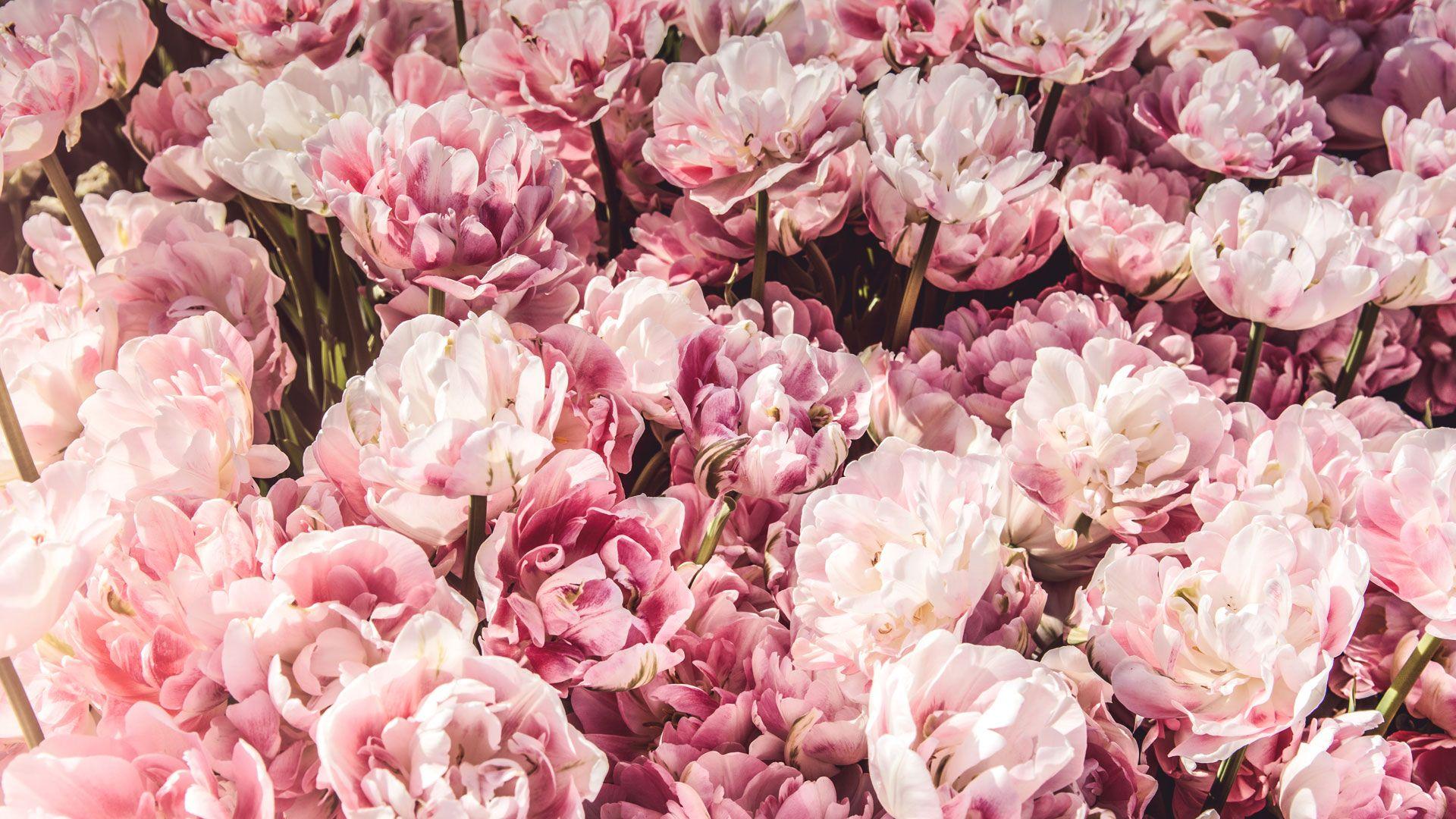Ramo variado en bolso rafia cosida - Amborella artesanía floral
