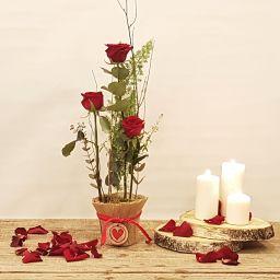 Centro 3 rosas rojas