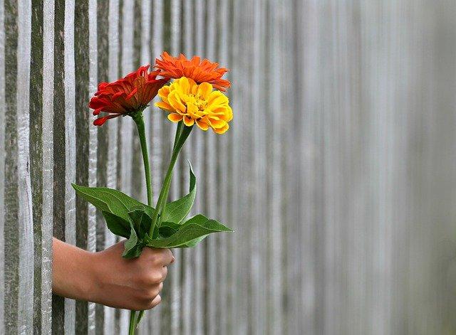 Mandar Flores en Madrid a domicilio